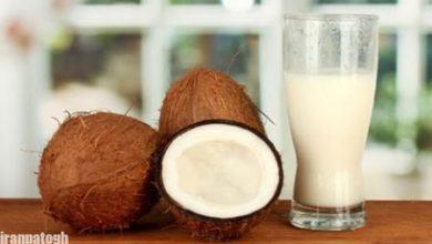 تصویر از فواید شیر نارگیل برای کودکان بررسی ارزش و اهمیت غذایی آن