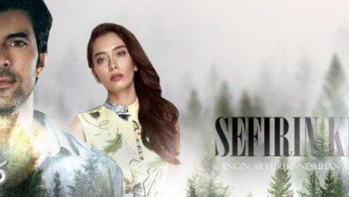 تصویر از خلاصه داستان قسمت 21 سریال ترکی دختر سفیر