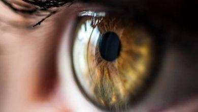 تصویر از سکته چشمی چیست ؟ بررسی علل و عوامل بروز مشکلات چشم