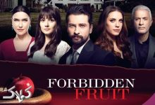 تصویر از آنچه باید درباره سریال ترکی سیب ممنوعه بدانید