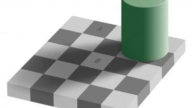 تصویر از خطای دید | سایه ی شطرنجی ادلسون