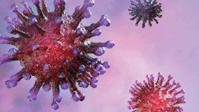 تصویر از علائم کرونا ویروس چیست؟ چگونه از ابتلا پیشگیری کنیم؟ درمان های طبیعی