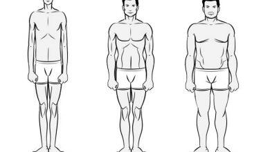 تصویر از انواع تیپ بدنی در بدنسازی و تمرینات مناسب هر تیپ