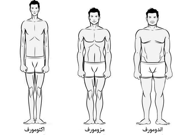 انواع تیپ بدنی در بدنسازی و تمرینات مناسب هر تیپ