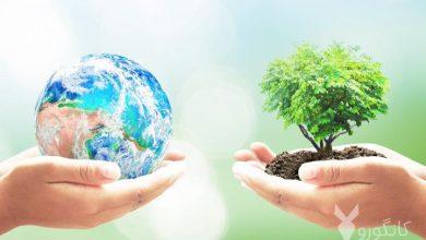 تصویر از روز جهانی زمین چه روزی است | علت نام گذاری روز زمین چیست