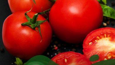 تصویر از لاغری شکم با گوجه فرنگی و چگونگی مصرف و تاثیر بسزا در کاهش وزن