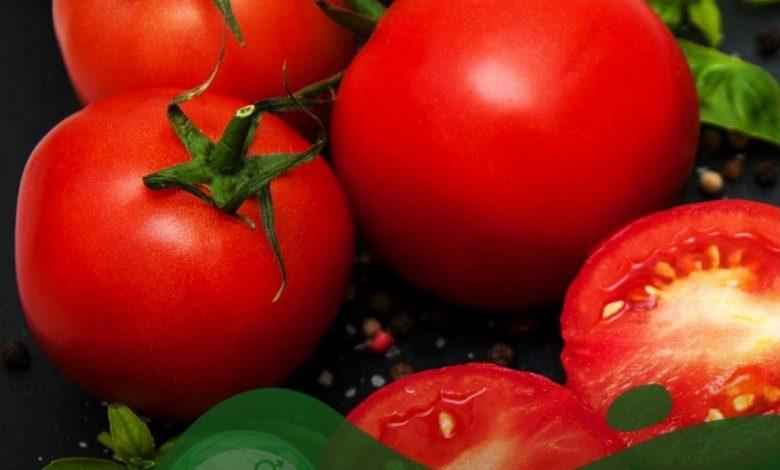 لاغری شکم با گوجه فرنگی و چگونگی مصرف و تاثیر بسزا در کاهش وزن