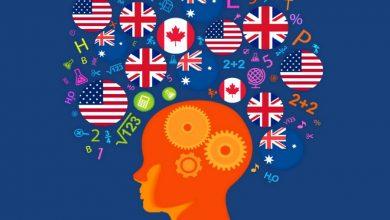 تصویر از بهترین روش یادگیری زبان جدید چیست؟ چگونه زبان یاد بگیریم؟
