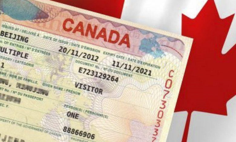 برای خدمات تخصصی ویزا از کجا اقدام کنیم؟