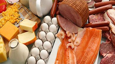 تصویر از منابع اصلی پروتئین – ۲۰ بهترین ماده غذایی سرشار از پروتئین