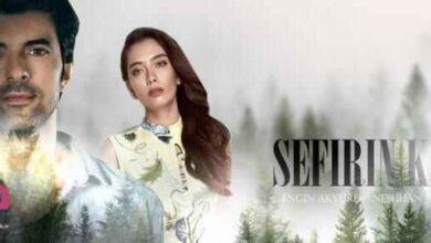 تصویر از خلاصه داستان قسمت اول تا آخر فصل دوم سریال ترکی دختر سفیر