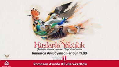 تصویر از دانلود سریال ترکی Kuslarla Yolculuk ( سفری به سوی پرنده ها ) با زیرنویس فارسی چسبیده