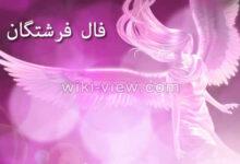 تصویر از فال فرشتگان الهی و مقرب جدید (اوراکل) / فال فرشته ها آنلاین ویکی ویو