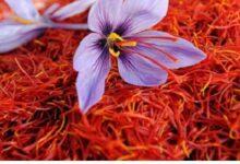 تصویر از با خوردن زعفران لاغر شوید